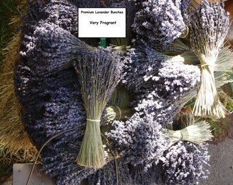 Dried Lavender Bunches (10 bunches- about 2,500 stems ) - dried lavender/English lavender/wedding lavender/lavender wedding/Dried flowers