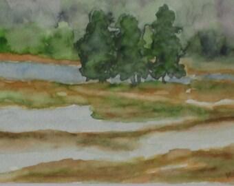 New Hampshire Artist Spring Meadow Framed Original Watercolor Painting Meadow Art Impressionist Artist Kathleen Daughan Western Ave Art