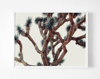 Desert print, Joshua Tree Print , Printable California Wall Art, California Print, Desert Wall Art, Desert art ,Desert Printable