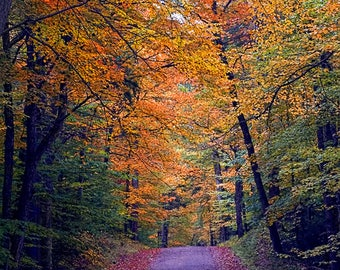 Adirondack Autumn Photography, Adirondack Decor, Home Decor, Wall Art, Adirondack Print, Nature Photography, Autumn Print, Old Forge Print