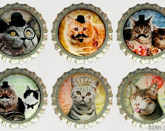 Cat Fridge Magnets, Cat Magnet Set, 6 Bottle Cap Magnets, kitchen organization, handmade magnet funny fridge magnet mustache cat party favor
