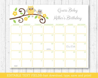Cute Owl Baby Due Date Calendar / Owl Baby Shower / Birthday Predictions Calendar / Gender Neutral / INSTANT DOWNLOAD Editable PDF A435