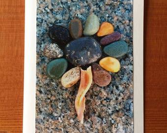 Stone Flower notecard - Vineyard Haven, MA