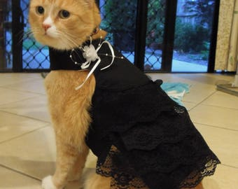 Pet clothing for cats and small dogs: Black and white cotton dress (Black widow)