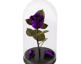 Live Forever Rose in Glass Dome, Mothers Day Gift, Home decor, Beauty And The Beast Rose, infinity rose, Real Eternal Rose, Preserved Rose