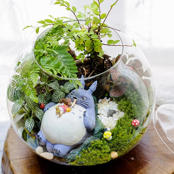 A set 4 totoro terrarium material accessories ghibli studio for Jardin japonais miniature