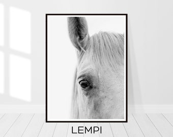 Horse Print, Black and White Photography, Horse Art, Horse Lover, Horse Decor, Equestrian Decor, Equestrian Gift, Large Wall Art, Art Print
