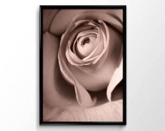 Rose art print, poster design, home decor A3, A4, A5