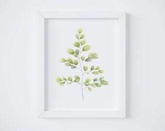 Fern No 1 Art Print - Maidenhair - Fern painting - watercolor - home decor - Maidenhair painting - greenery - fern art - fern leaf - leaf