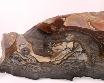 Blue Biggs Jasper Collector Slab, Specimen Slab, Picture Jasper, Oregon