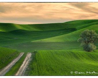 Coucher de soleil Glow - photographie de paysage de roulement terres agricoles vert et Orange ciel coucher de soleil couleur d'archives photo Wall Art Home Decor