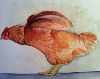 Chicken - watercolor