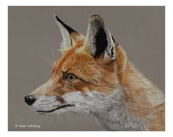 Fox - Limited Edition Giclee Print, 8 x 10 inches