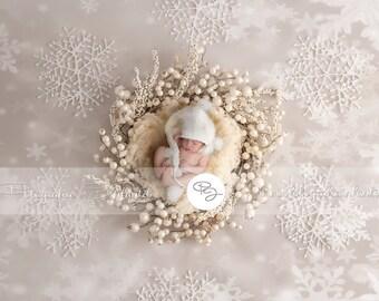 Newborn Digital Backdrop (nest /snowlake)