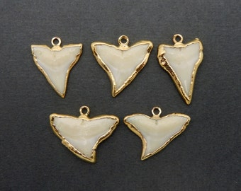 Petite White Shark Tooth Pendant with Electroplated 24k Gold Edges (S34B10b-02)