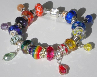 Over the Rainbow European charm Murano beads bracelet red orange yellow green blue purple You pick chain size Help save a cat/kitten