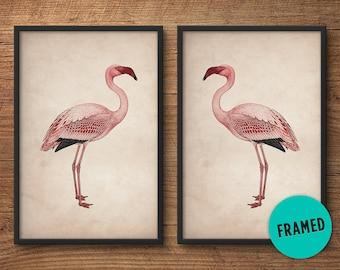 Flamingo posters, Framed print set, Pink flamingo print, Large wall art, Large framed art, Wall art, Vintage art, Bird print, Framed art set