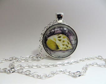 Yellow seashell, Pendant, Necklace, Beach, silver tone, 24 inch rolo chain, gift for her,