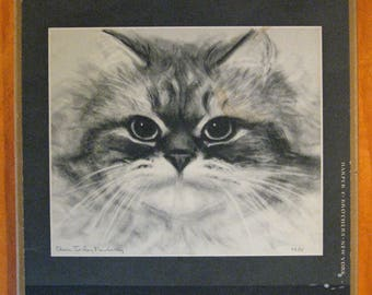 Cats & Kittens: a Portfolio of Drawings by Clare Turlay Newberry