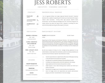 professional curriculum vitae professional cv resume template for ms word cover letter - Professional Cv