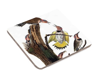 Gold-Winged Woodpecker - Coaster