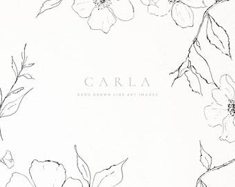 Hand Drawn Fine Art Graphic Images - Carla