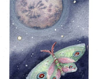 SALE!!! Moon Moth, ACEO