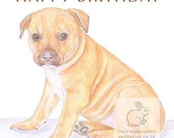 Cookie the Staffordshire Bull Terrier - Birthday Card