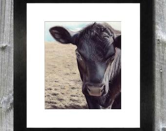 Cow / Bull Art Print / Pastel Painting / Farm Art