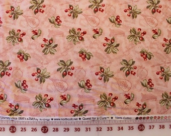 "Northcott Quilting Fabric "" Sentimental Journey circa 1800's"" by Ro Gregg  Sold by the HALF Yard"