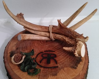 4 Deer antlers!! Crafts! Dog chews! Cabin decor!!