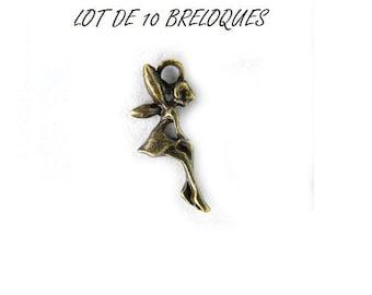 minimalist set of 10 charms fairy color bronze (T35)