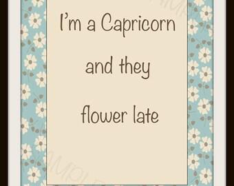 Capricorn astrology, astrology art, capricorn art print, astrology wall art, capricorn wall art, downloadable quote, capricorn quote, 8x10