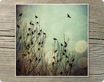 Flight 8x8 Inch Bird Print