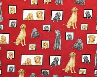 Labrador Retriever Puppy Adult I Spy Curious Canine Dog Fabric By Fat Quarter