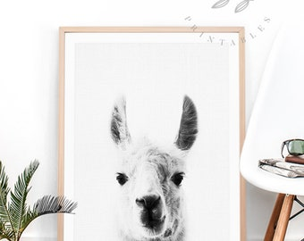 Llama Print, Llama Peekaboo, Alpaca Peekaboo, Modern Nursery Decor, Kids Room Decor Ideas, Llama Wall Art, Minimalist Art, Best Selling Item