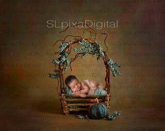 Digital background digital backdrop newborn 2JPG files  #16