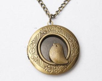 Bird Locket Necklace, Locket Jewelry, Image Locket, Picture Locket, Photo Locket, Locket Pendant
