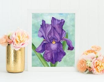 Iris Watercolor Print 8x10