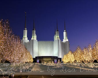 Christmas Lights at the Washington DC Temple Picture