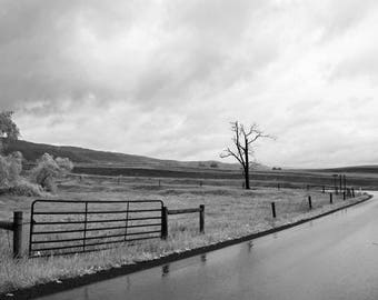 Contemplation | Photo 8x10 Black and White Landscape Photography