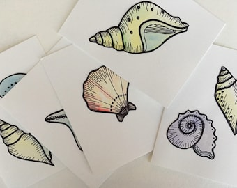 Seashell Card (blank greeting card with ocean inspired illustration)