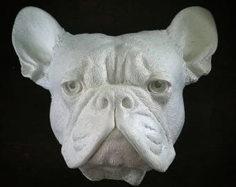 French Bulldog - Faux Taxidermy
