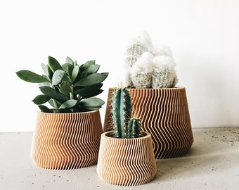 Minimalist Geometric Wood Planter for succulents or cacti / Made in France SAVANNE Original gift Mother's day