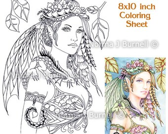Cybele and Kaida Little Dragon Fairy Tangles digital Printable Coloring Book Pages Sheets Norma Burnell Dragons Adult Coloring for Grownups