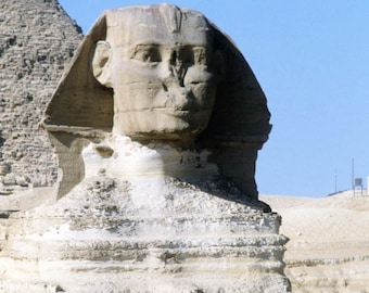 Egyptian Sphinx in Cairo Egypt