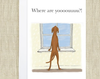 Vizsla  Dog Card Where are you? Greetings card birthday or thank you, blank inside for all occasions