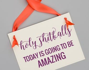 Holy Shitballs Today Is Going To Be Amazing Sign Funny Wedding Signage Banner for Party or Shower 1339 BW