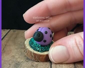 Polymer Clay Purple Ladybug B, Ladybug, Ladybug Miniature, Garden Decor, Fairy Garden