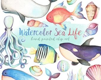 Watercolor Sea Life Clipart - Watercolor Clipart, Hand Painted Clip Art, Unique Ocean Clipart, Watercolor Digital Printable